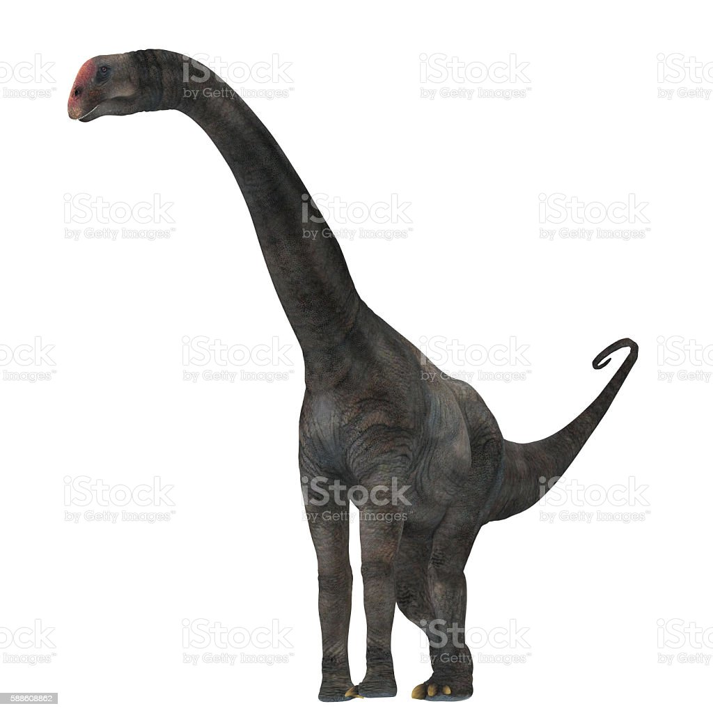Brontomerus Dinosaur on White stock photo