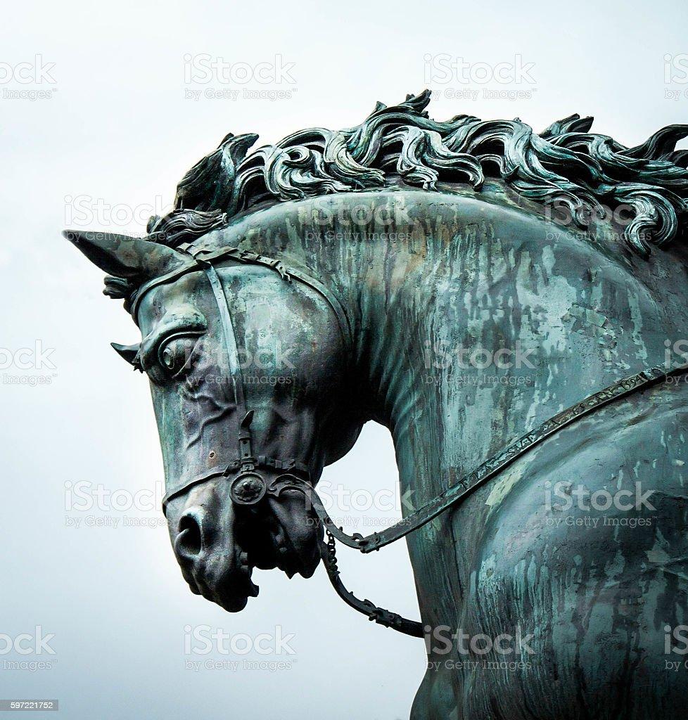 bronze horse head stock photo