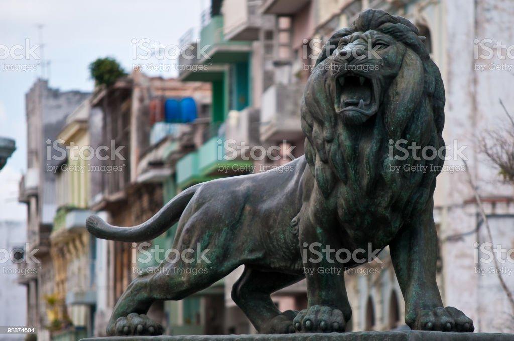 Bronze lion stock photo