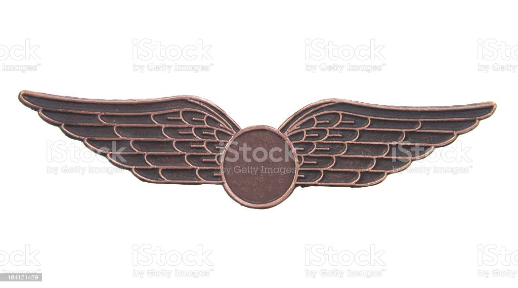 Bronze wings royalty-free stock photo