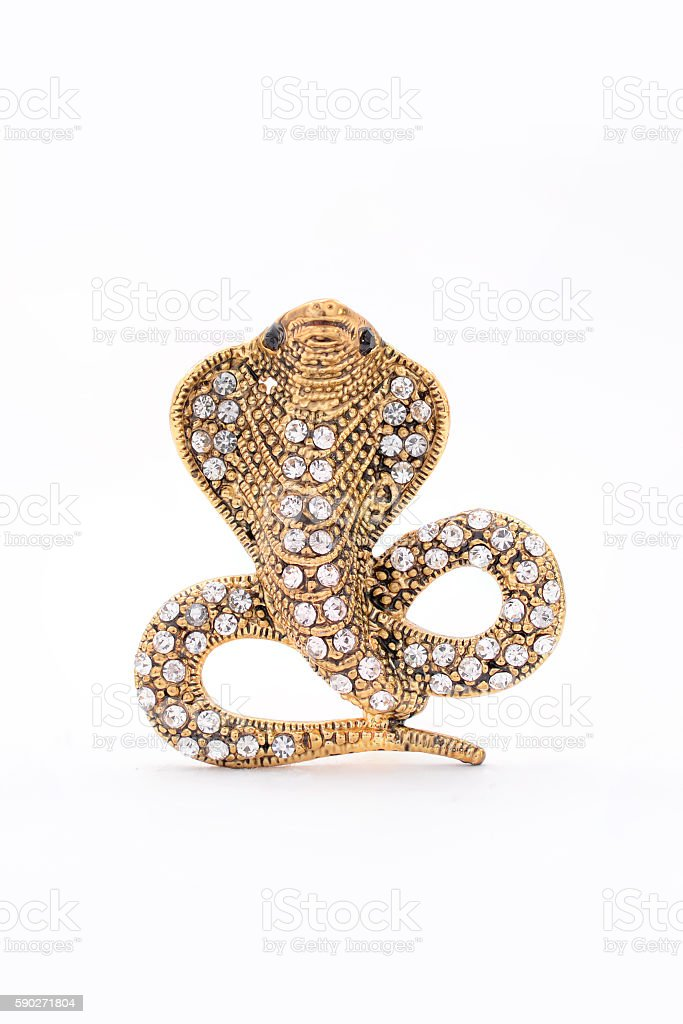 brooch cobra on a white background stock photo