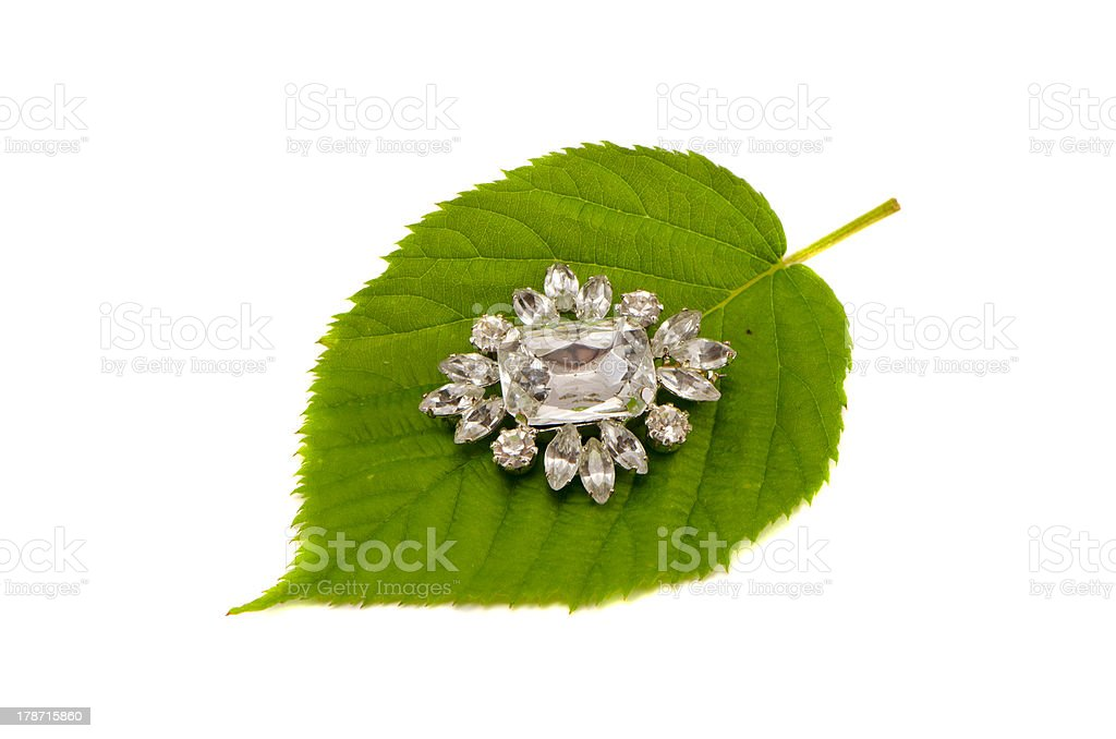 brooch on green summer leaf isolated royalty-free stock photo