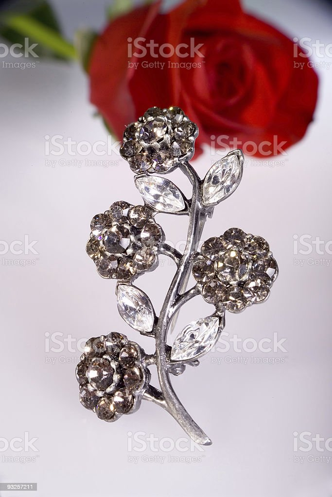 Brooch with Roses royalty-free stock photo