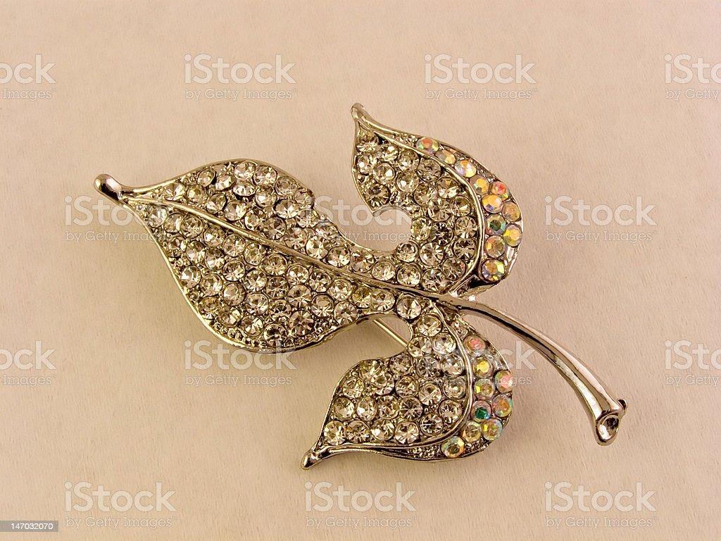 brooch-leaf  decoration royalty-free stock photo