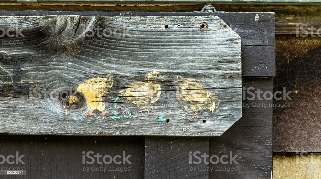 Brooder House Close-up Photo stock photo