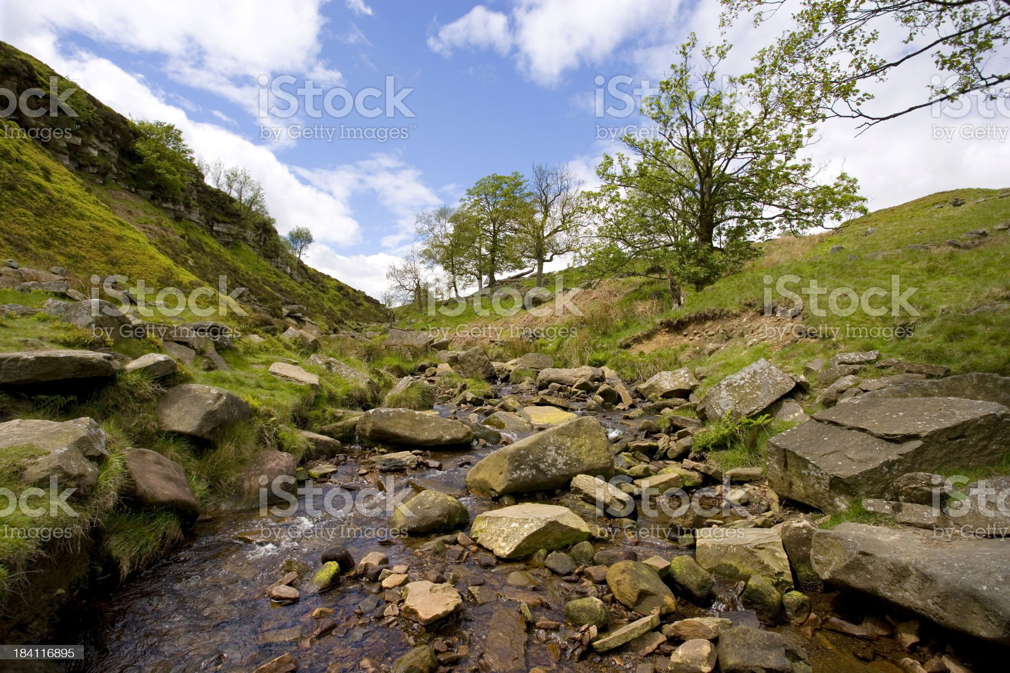 Brook royalty-free stock photo