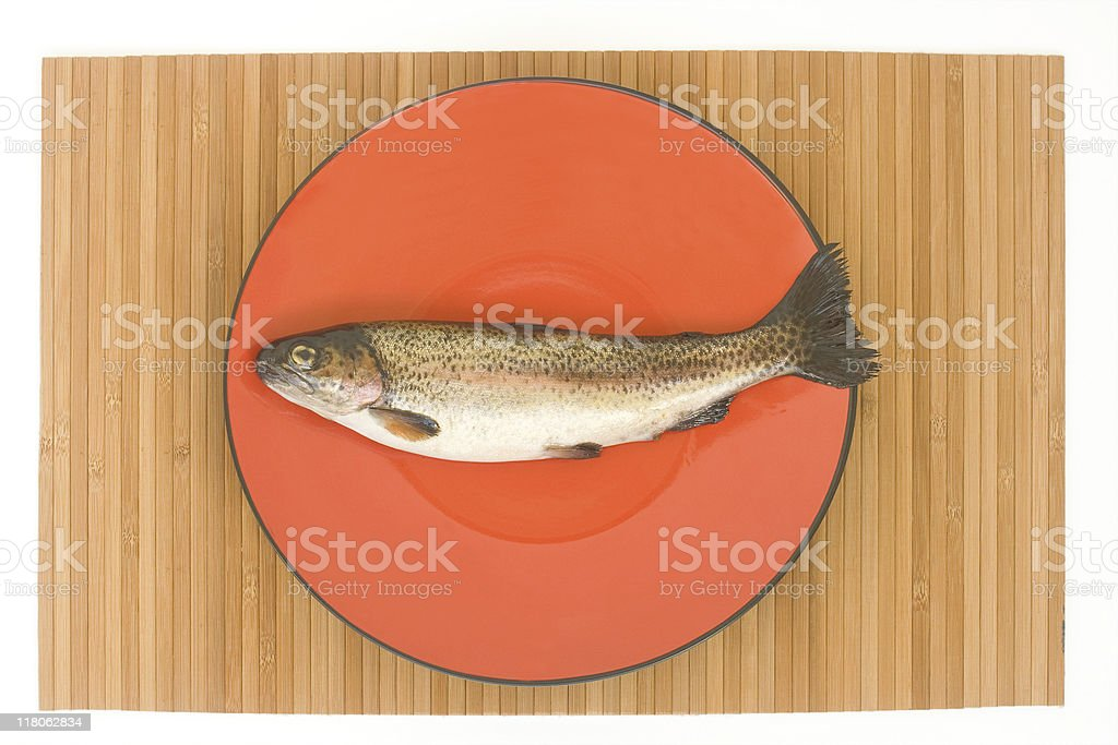 Brook trout royalty-free stock photo