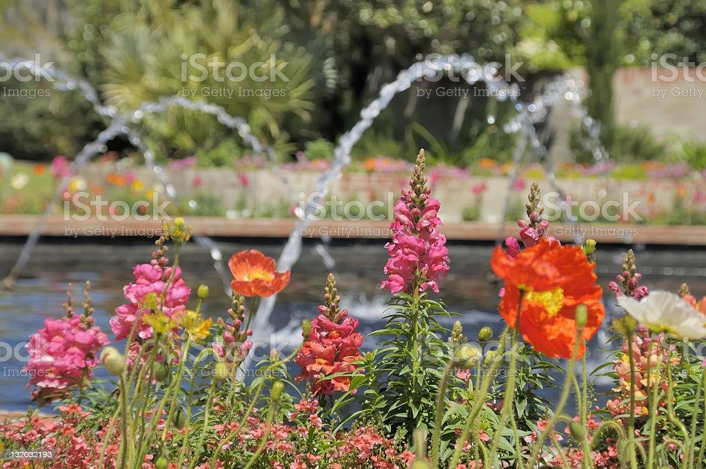 Brookgreen Gardens royalty-free stock photo