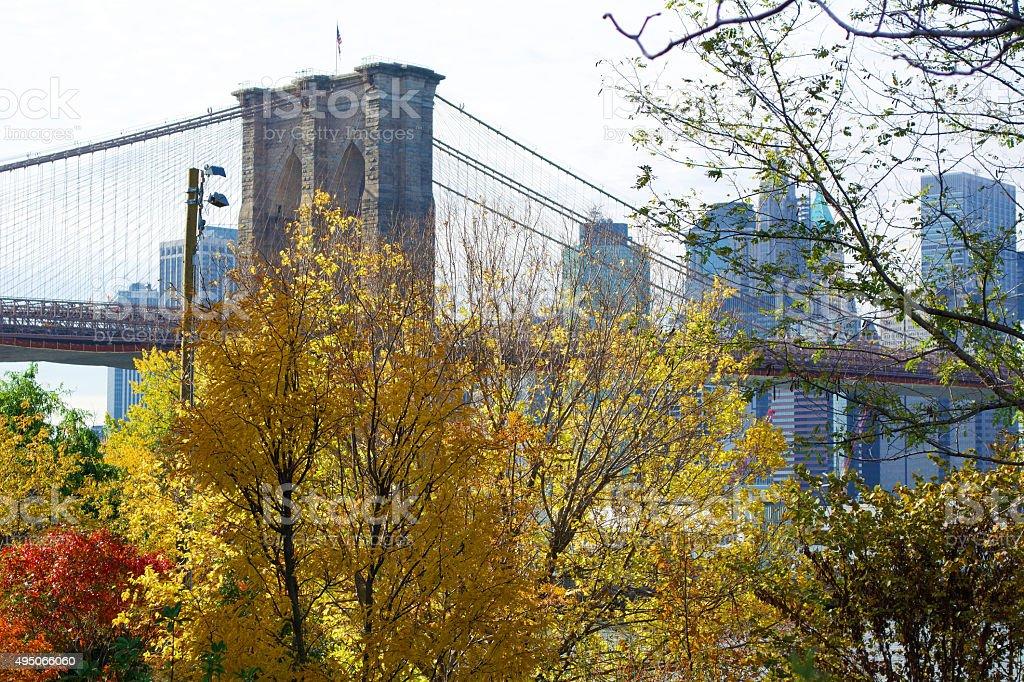 Brooklyn Bridge and Fall Foliage stock photo