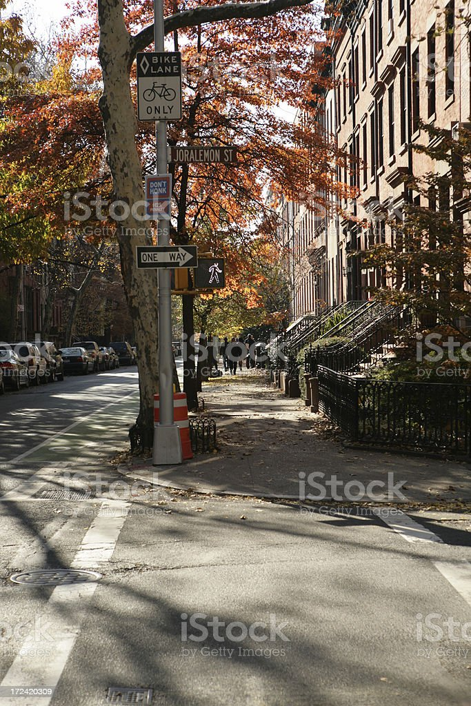 Brooklyn Heights Street New York Fall Leaves royalty-free stock photo