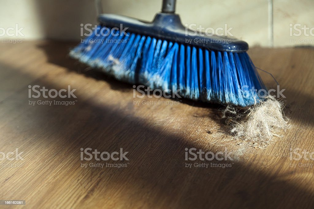 Broom, Dirt and Fur Ball on Parquet Floor royalty-free stock photo