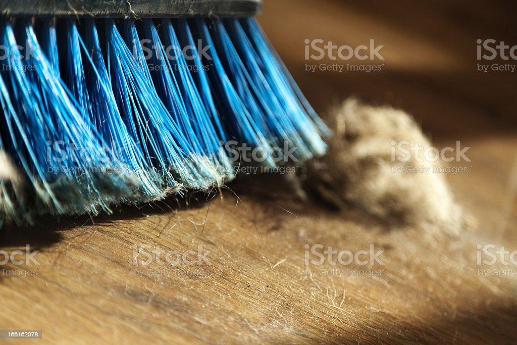 Broom, Dust and Fur Ball on Parquet Floor stock photo