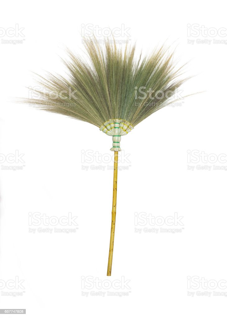 Broom grass flower on white background. stock photo