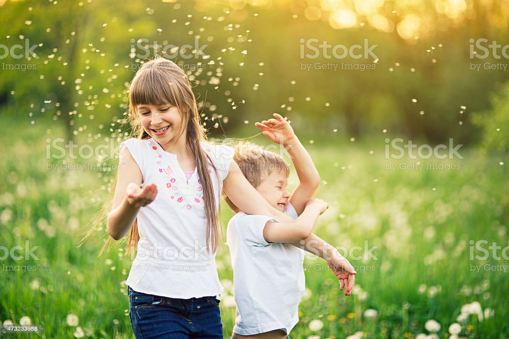 Brother and sister having fun in dandelion field. stock photo
