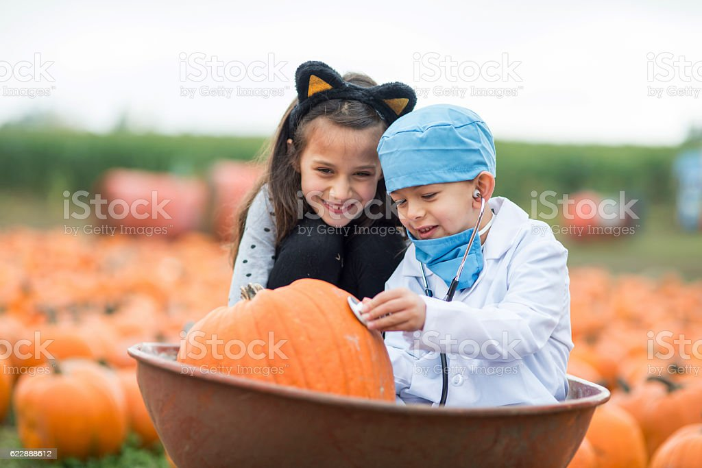 Brother and sister inspecting a pumpkin wearing halloween costumes stock photo