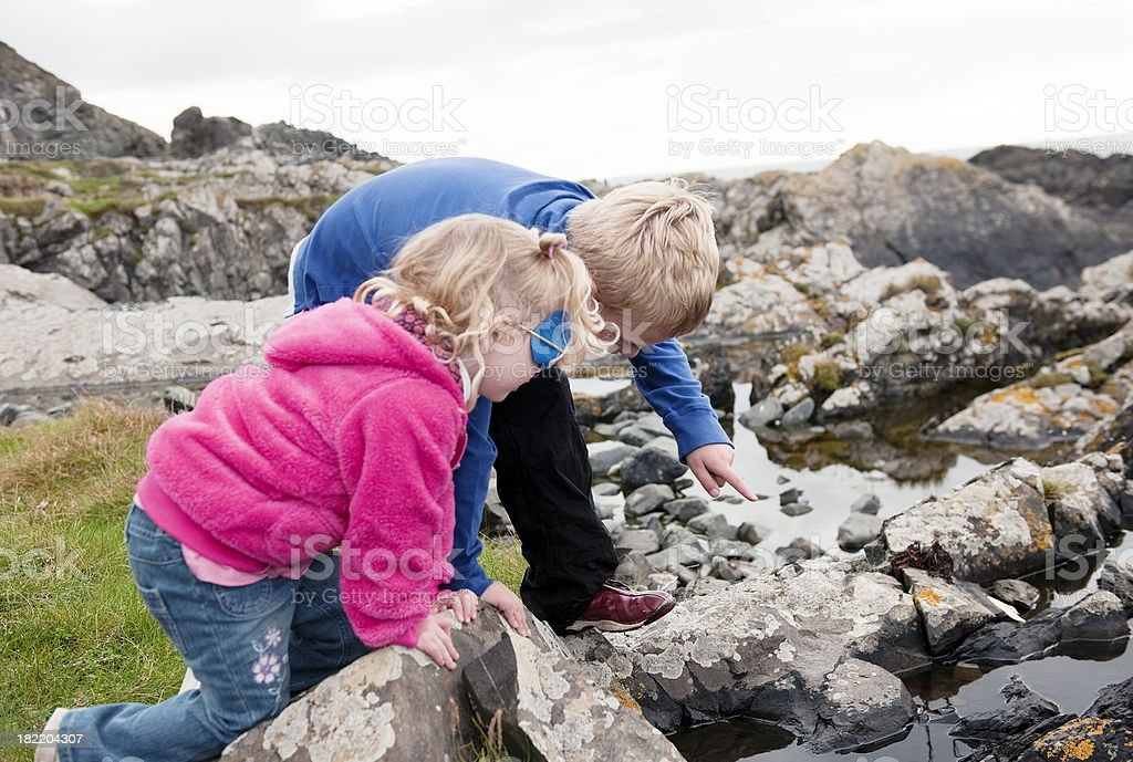 brother and sister looking for crabs in a rockpool royalty-free stock photo
