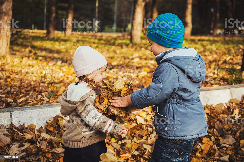 Brother and sister playing with leaves stock photo