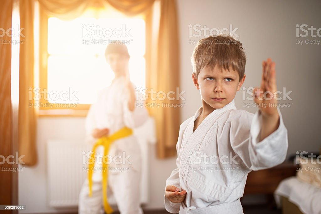 Brother and sister practicing karate stock photo
