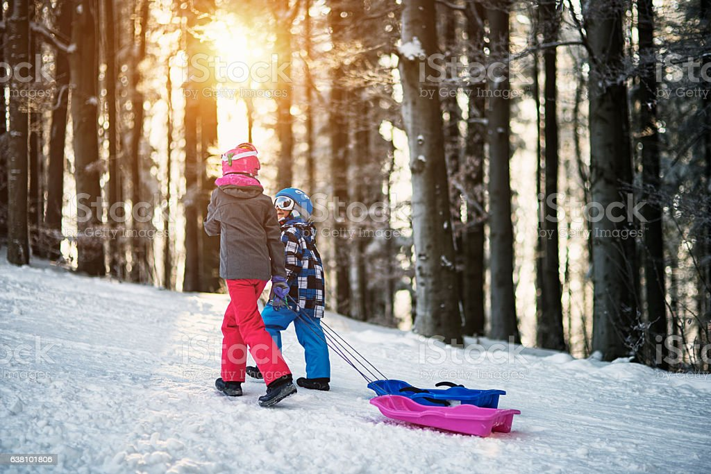 Brother and sister tobogganing in winter forest. stock photo