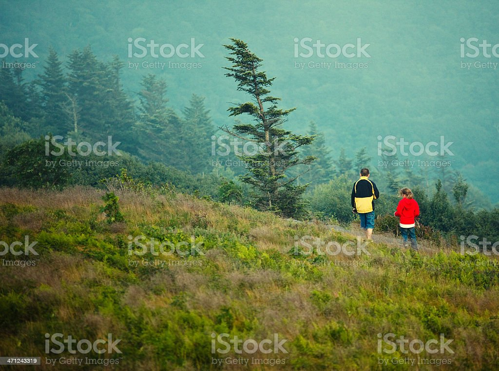 brother and sister walking around Roan Mountain stock photo