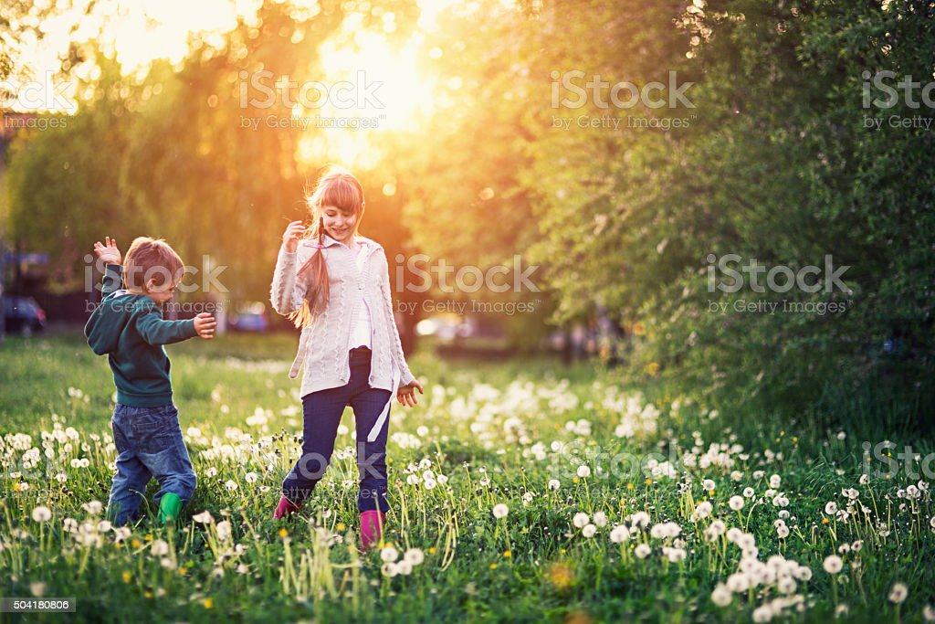Brother and sister walking in dandelion field. stock photo