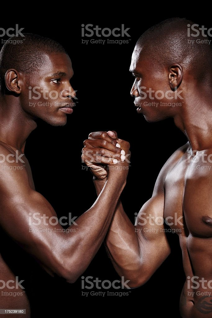 Brothers and rivals royalty-free stock photo