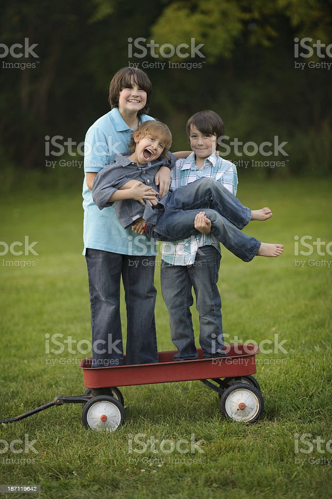 Brothers Laughing Outside royalty-free stock photo