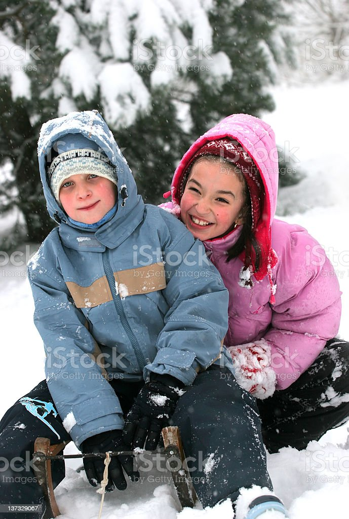 Brothers on the sledge royalty-free stock photo