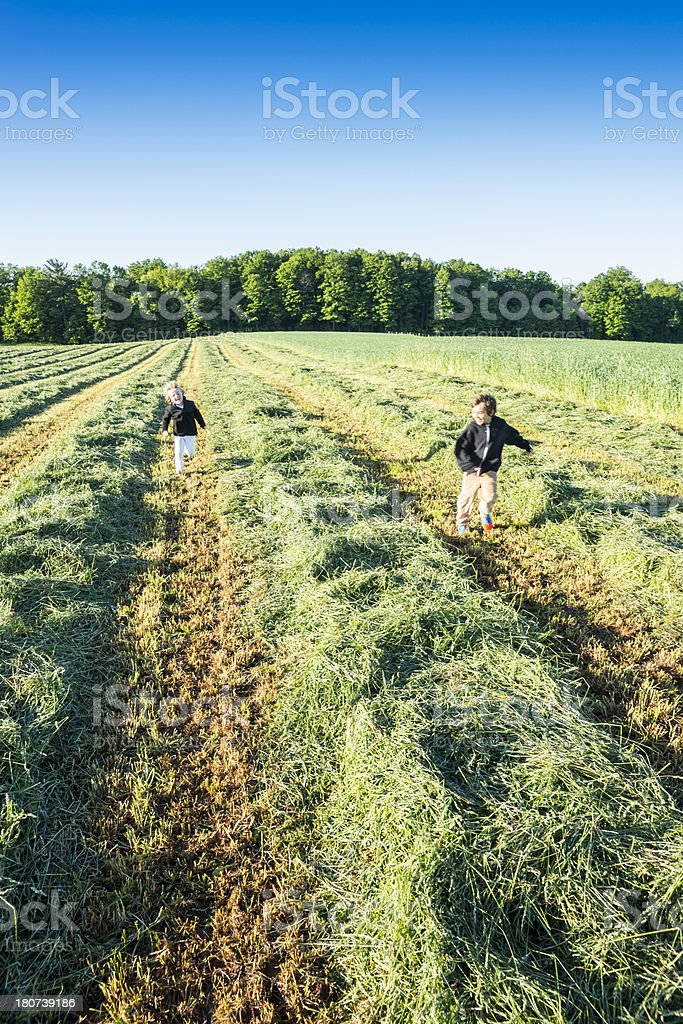 Brothers (real) running in a farm field royalty-free stock photo