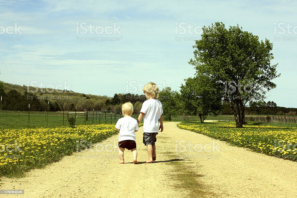 Brothers Walking Down Road royalty-free stock photo