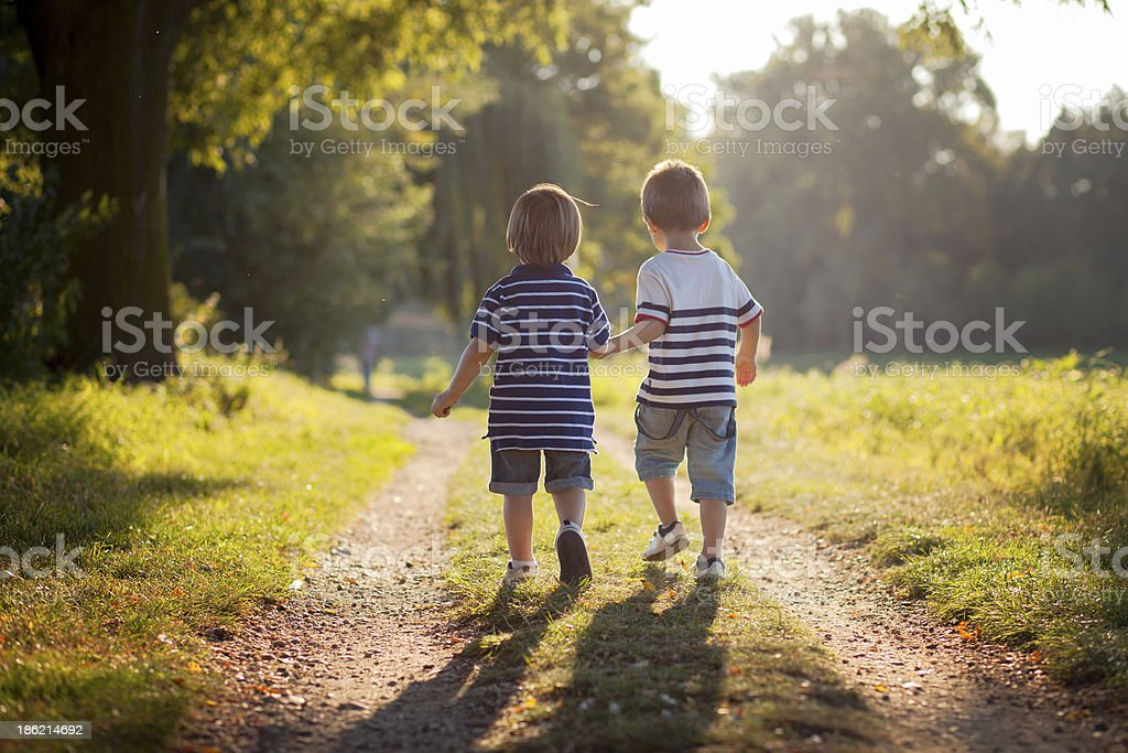Brothers, walking in a park royalty-free stock photo