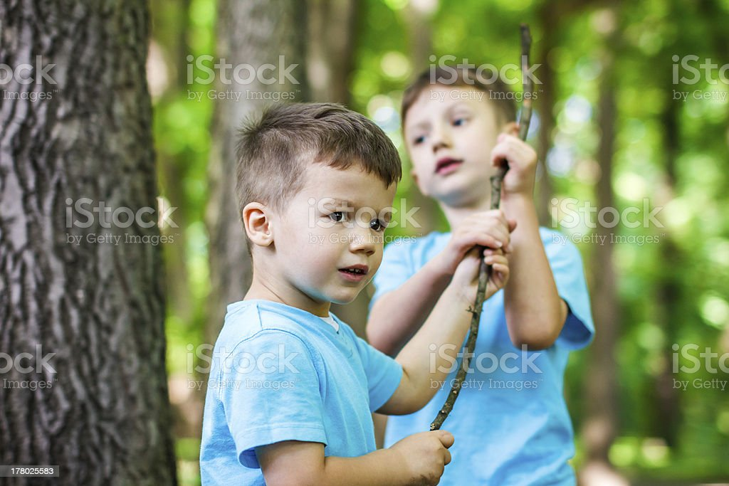Brothers with branch royalty-free stock photo