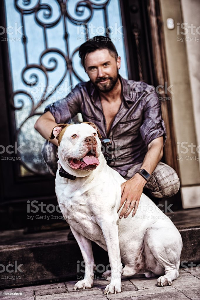 Brown and White American Bull Dog and His Best Friend stock photo