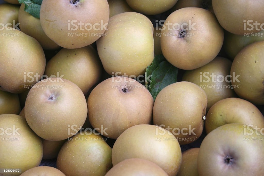 Brown apple from Italy stock photo