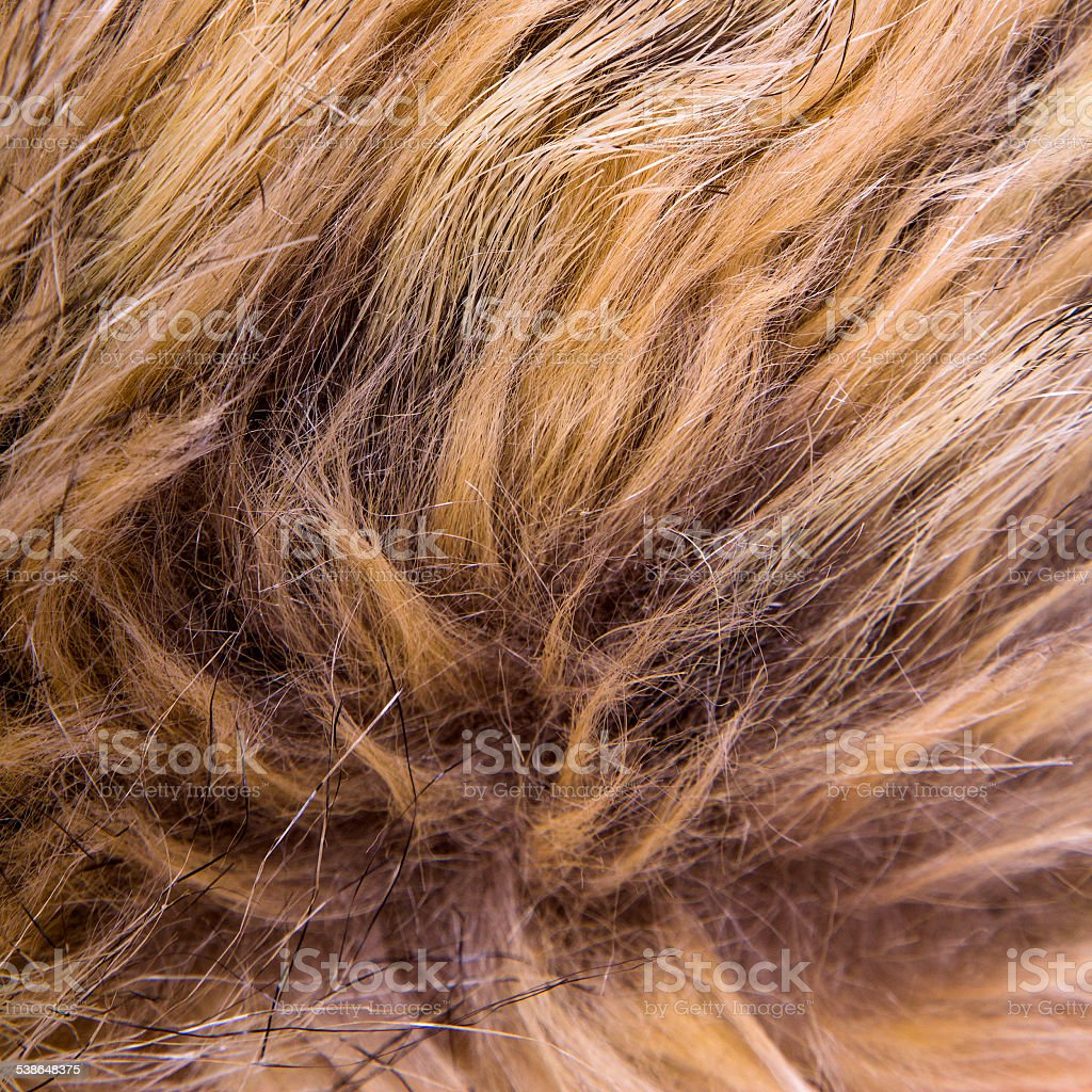 Brown artificial fur for background stock photo