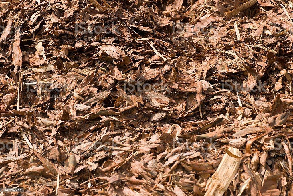Casca marrom foto royalty-free