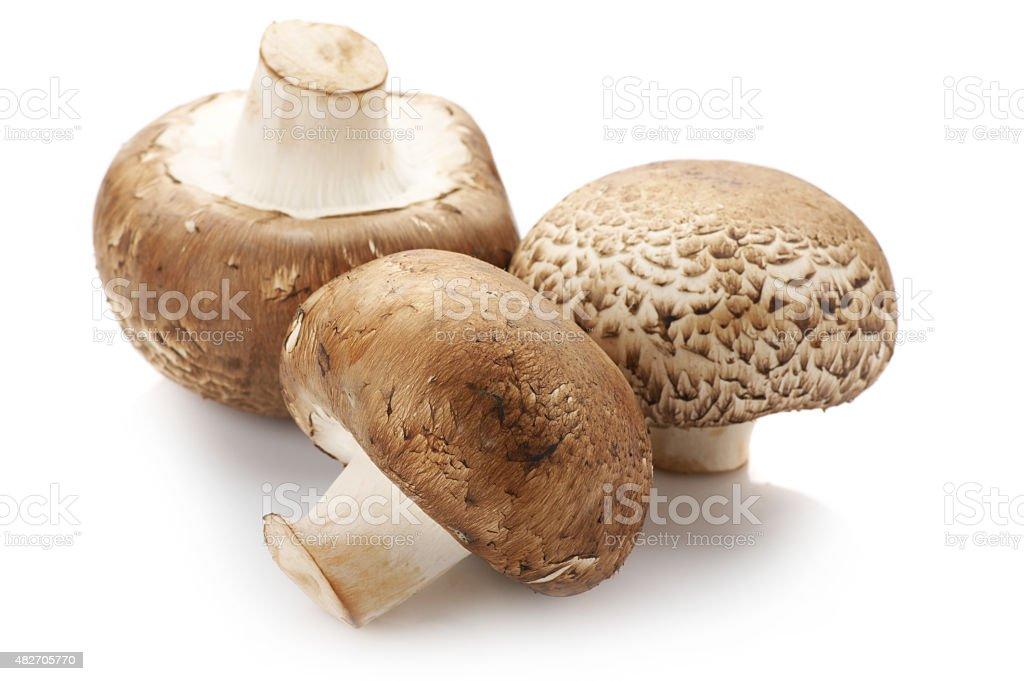 Brown cap mushrooms stock photo