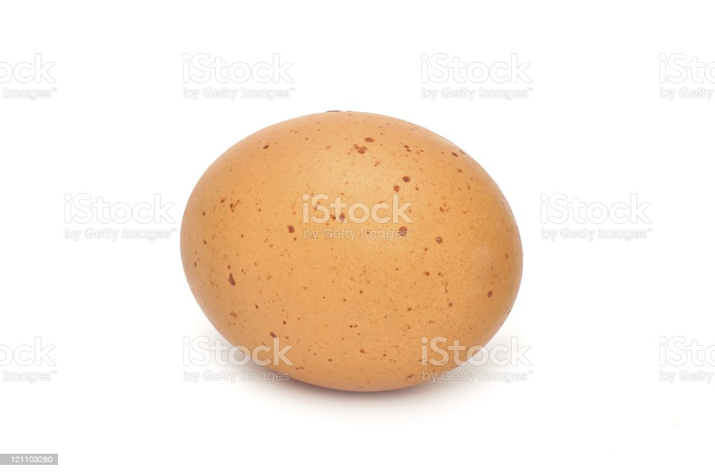 Brown Chicken Egg royalty-free stock photo