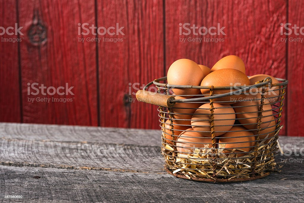 Brown Chicken Eggs in an old wired basket stock photo