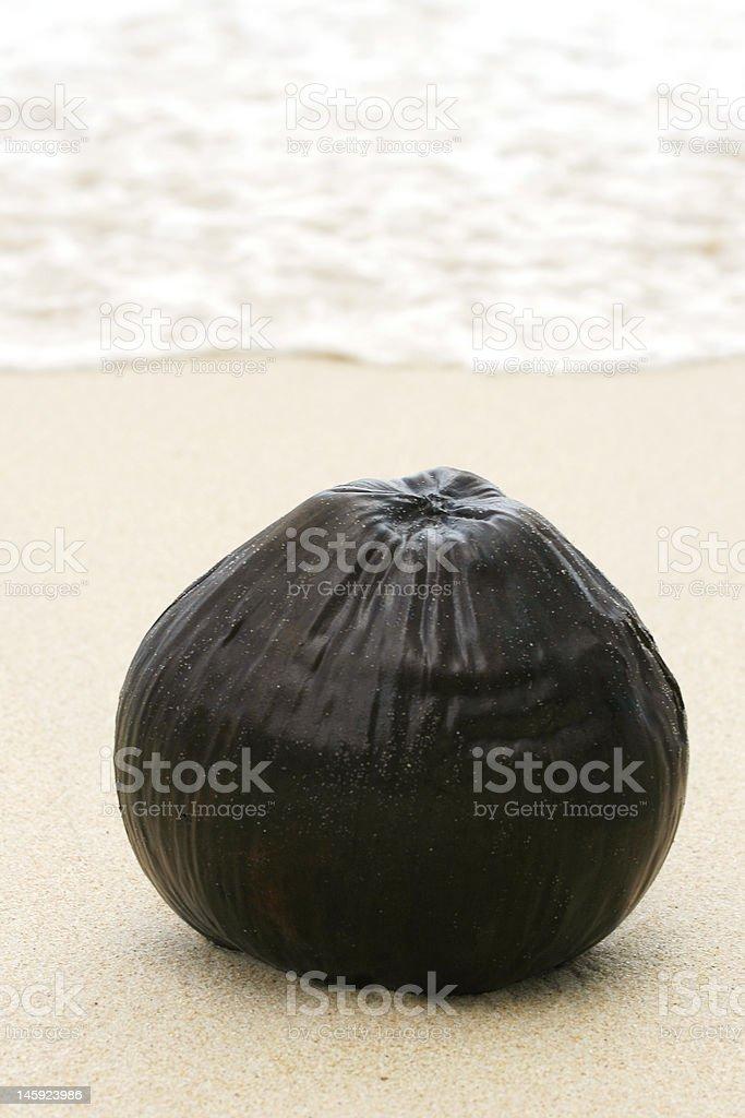Brown coco stock photo