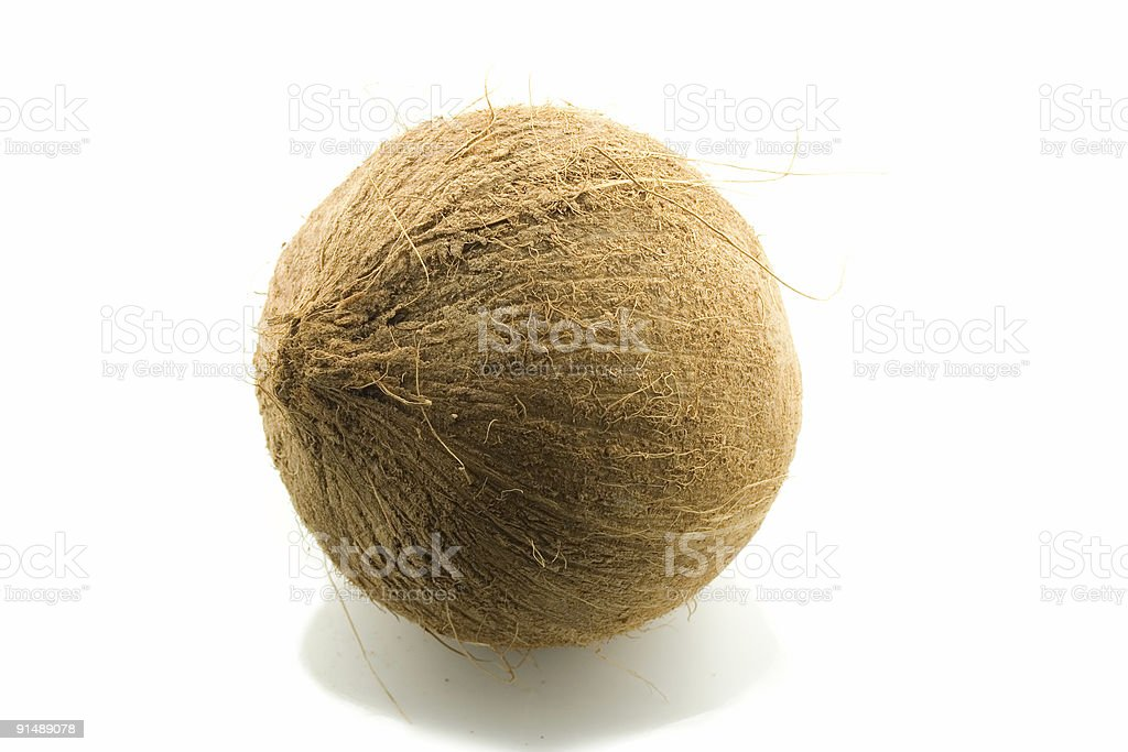 Brown Coconut royalty-free stock photo