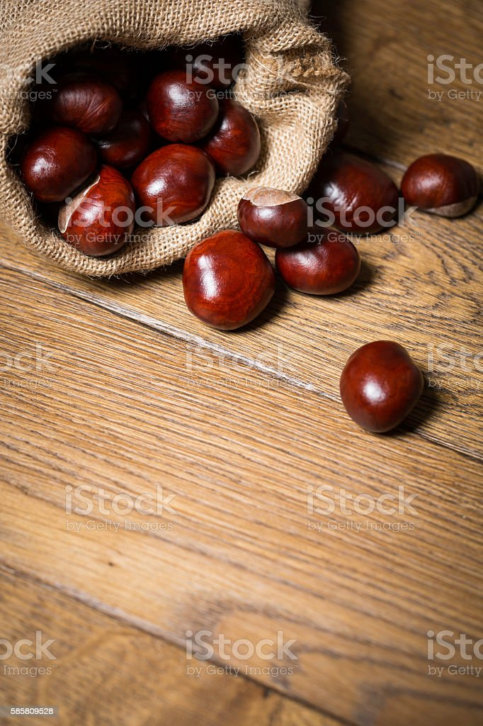 brown conkers on wooden table / floor stock photo