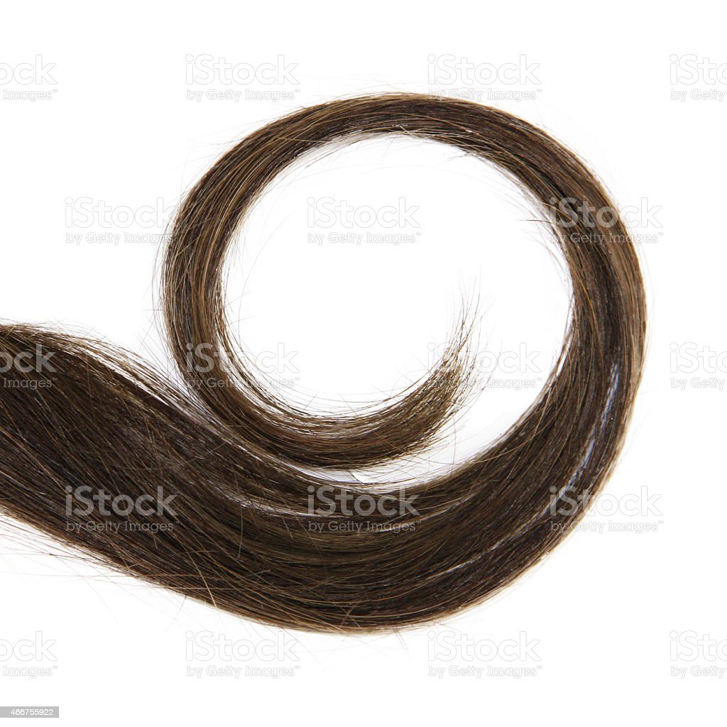 brown curl isolated stock photo