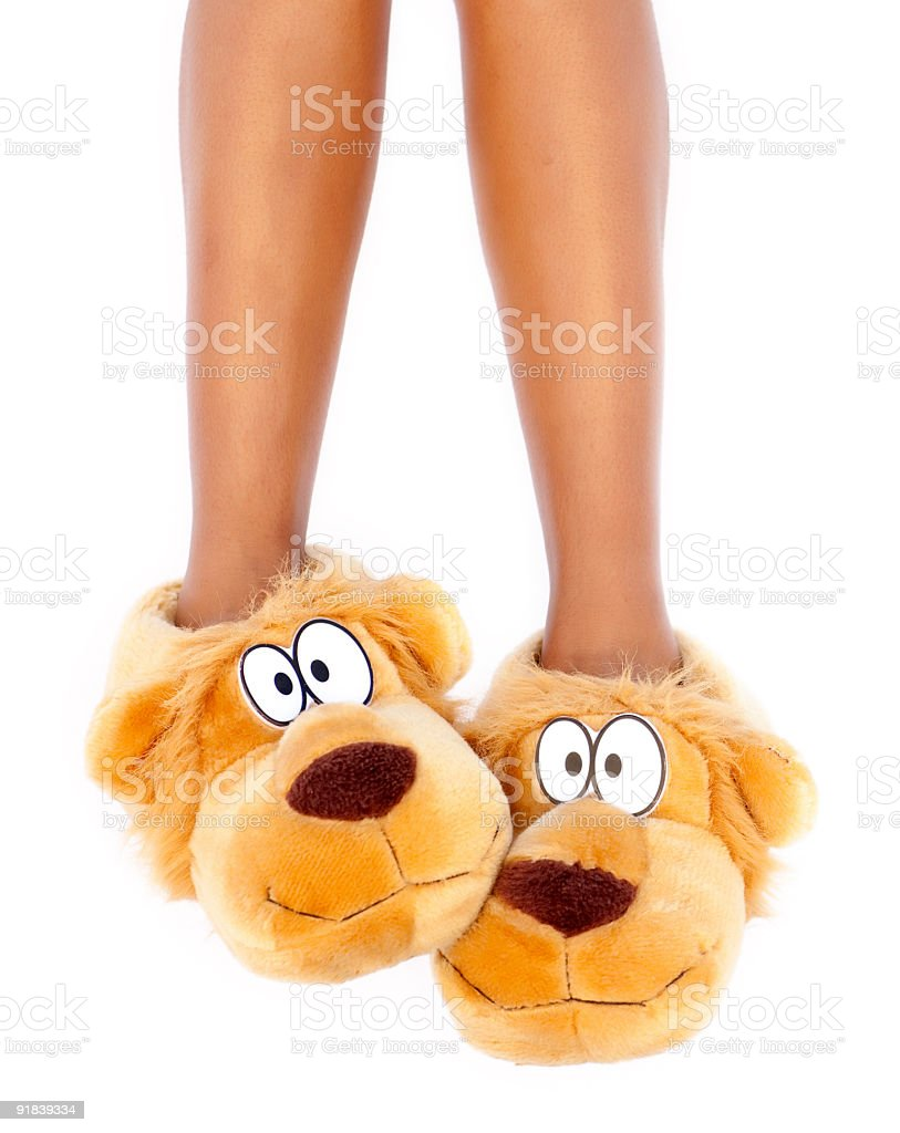 Brown dog character slippers on feet stock photo