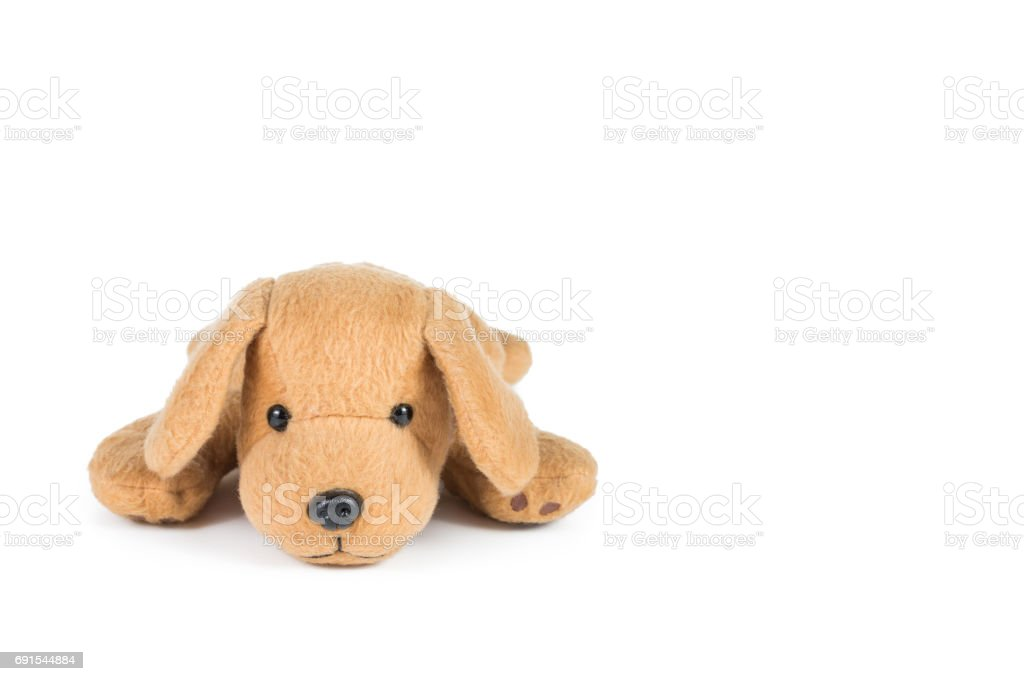 Brown dog doll isolated on white background stock photo