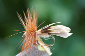 Brown dry fly fishing fly, leafs in background