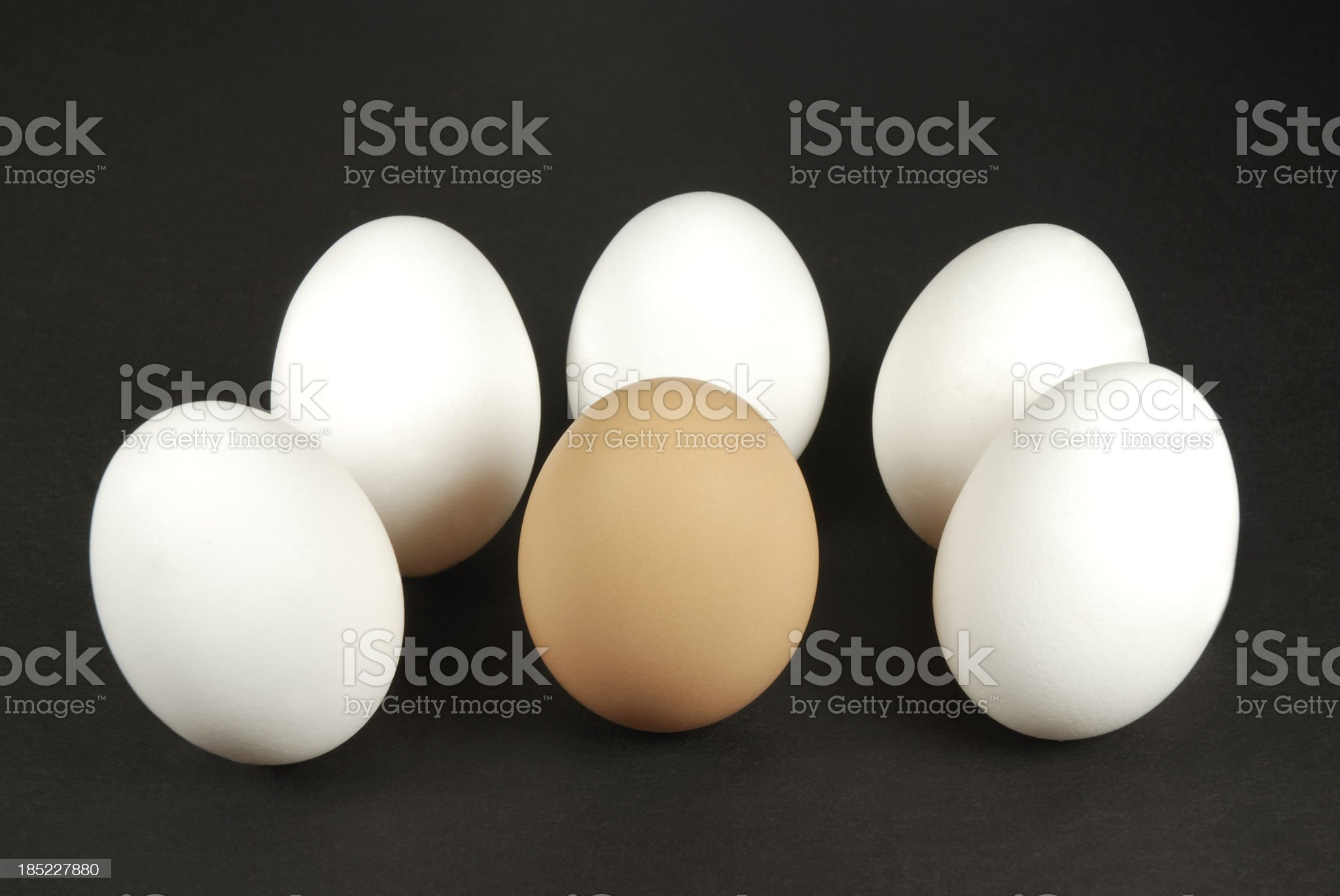 Brown egg surround by white eggs. royalty-free stock photo