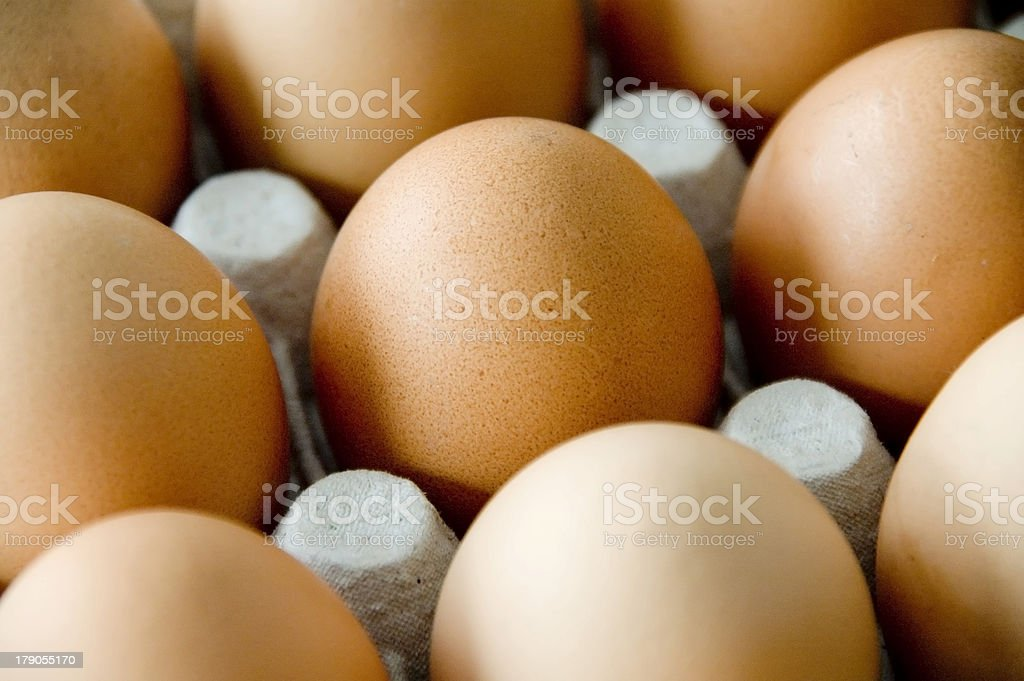Brown eggs in carton royalty-free stock photo