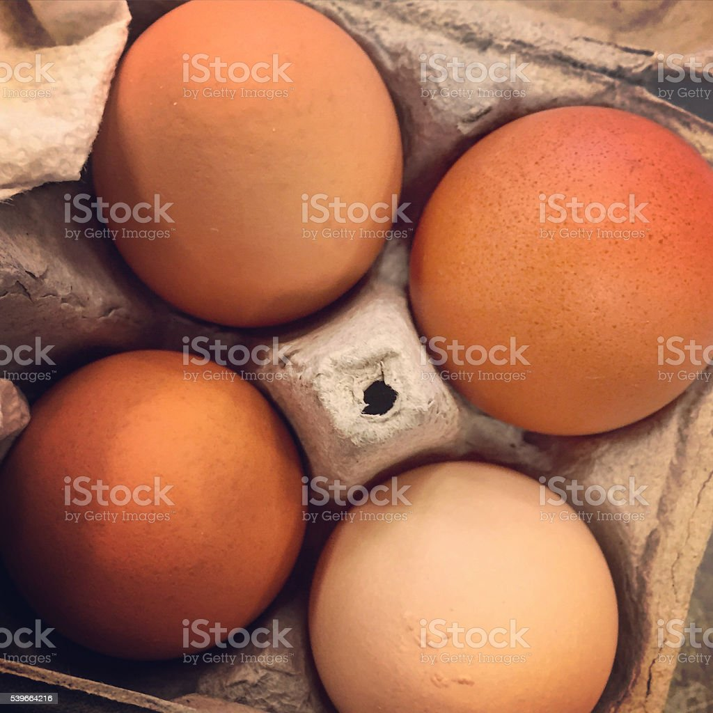 Brown Eggs in Carton stock photo