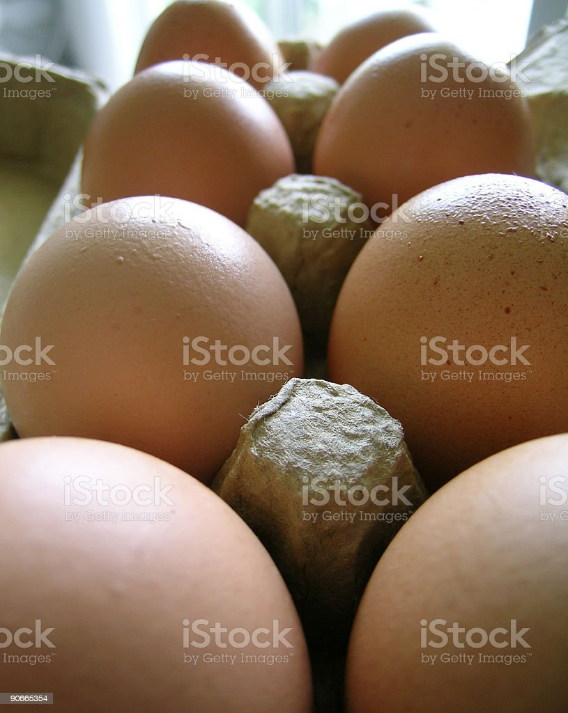 Brown Eggs royalty-free stock photo